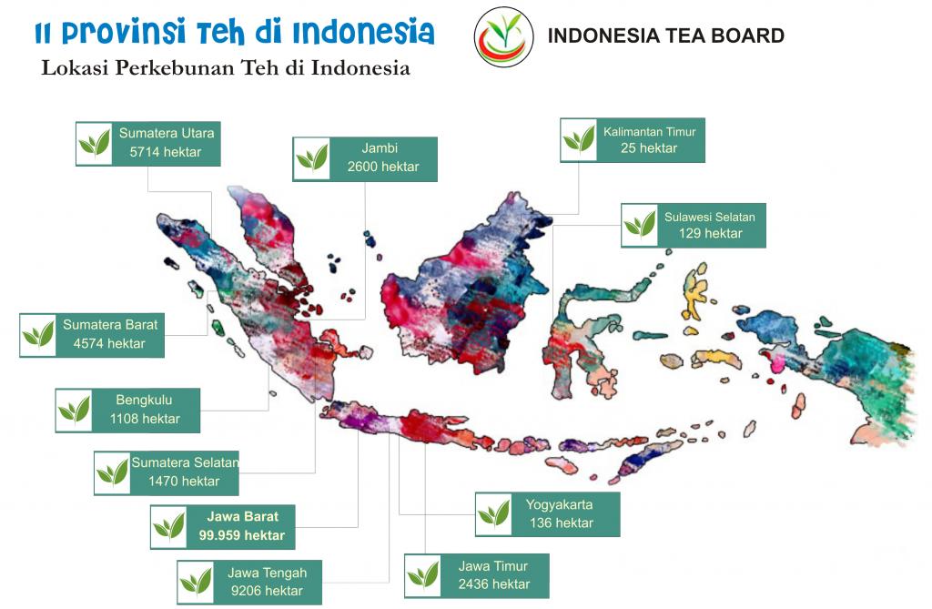 LOKASI TEH INDONESIA