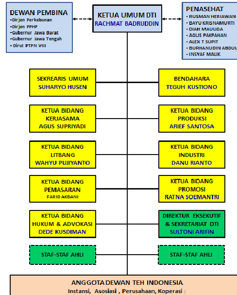 Organisasi DTI